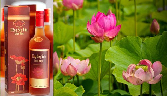 Rượu hồng sen tửu đồng tháp